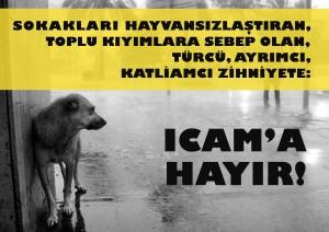ICAM 2015 Protesto Afişi